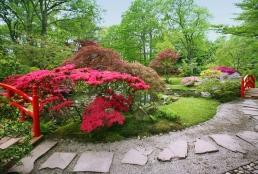 Jardin-japonais2B
