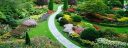 Un-beau-jardin-647x246