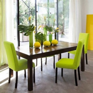 lime-green-dining-room-decor-300x300